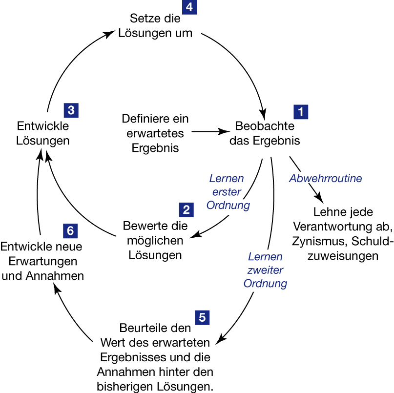Zweischleifiges Lernen (Double-Loop-Learning)